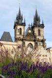 Tyn教会n布拉格 免版税图库摄影