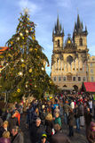 Tyn Church and its christmas tree in Prague Royalty Free Stock Photo