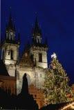 Tyn katedra przy Bożenarodzeniowym Praga Obraz Stock