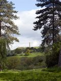 The Tyndale Monument near Wotton Under Edge, Gloucestershire, UK. View between trees to The Tyndale Monument standing on the Cotswold escarpment near Wotton Stock Images