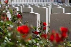 Tyne Cot Cemetery fotos de stock royalty free