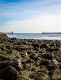Tynemouth piers - the piers of North and South Shields with a kelp covered foreground stock photos
