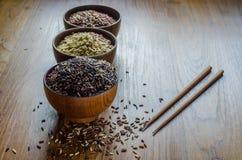 typ brown ryż fotografia royalty free
