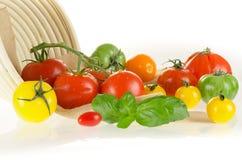 Typ pomidory z koszem Obraz Stock