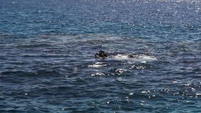 Type avec des piqués d'un instructeur après plongée en mer banque de vidéos