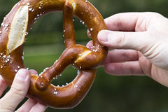 The type of bread pretzel popular in Germany, Austria, Switzerla Royalty Free Stock Photography