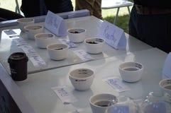 Type of Coffee. Best Coffee & Tea at Singh Park Chian Rai, Thailand Stock Photos