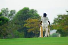 Type d'un batteur de cricket Images stock