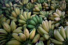 Type de bananes de tas de fruits frais tropicaux photographie stock libre de droits