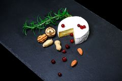 Type de brie de fromage Fromage de camembert E r photographie stock libre de droits