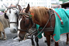 Type de transport de vintage photo libre de droits