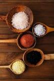 Type différent de sel dans des cuillères en bois Image stock