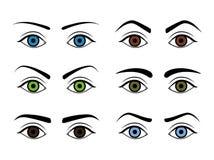Type différent sourcils de femme réglés Vecteur Photo stock