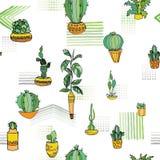 Type différent usines d'intérieur dans des pots de fleurs mignons avec l'ornement traditionnel Configuration sans joint Illustrat Photographie stock