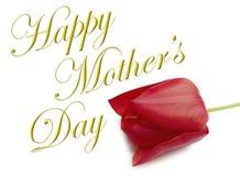 Type heureux de jour de mères Images stock