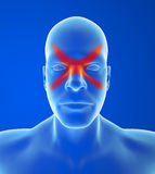 Type mal de tête : Sinus Image stock