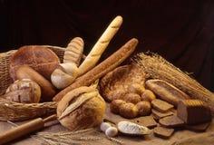 Typer av bröd och öron Arkivbild