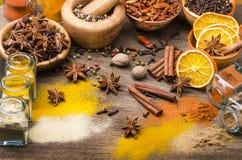 Typer av kryddor, färger och anstrykningar 1 livstid fortfarande royaltyfria bilder
