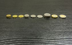Typer av mynt - polsk zloty Royaltyfri Fotografi