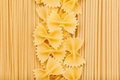 Typer av pasta Royaltyfri Foto
