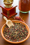 Typer av varma kryddor Arkivbild