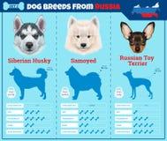 Typer för hundkapplöpningavelinfographics av hunden föder upp från Ryssland stock illustrationer