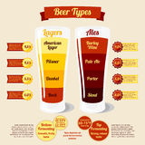 Types of beer infographic, with places for your Royalty Free Stock Photos