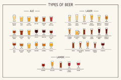 Types of beer. Various types of beer in recommended glasses. Vector illustration Stock Images