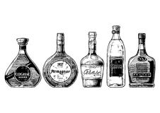 Types of Brandy. Vector hand drawn illustration set of different brandies types. Cognac, armagnac, calvados, Grappa and brandy. on white background royalty free illustration
