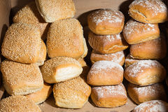 Types of buns Royalty Free Stock Image