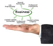 Types of business. Presenting six Types of business royalty free stock photo