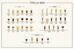 Types de bière Divers types de bière en verres recommandés Illustration de vecteur Images stock