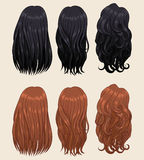 Types 2 de cheveux Photographie stock libre de droits