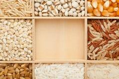 Types de grains Photographie stock libre de droits