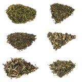 Types de thé vert chineese d'élite Photos libres de droits