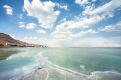 Types of dead sea. On a summer day Stock Photo