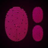 Types of fingerprint patterns Stock Images