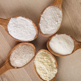 Types of flour Royalty Free Stock Images
