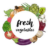 Types of fresh vegetables in the circle Royalty Free Stock Photos