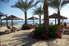 Types of Fujairah resorts. Resorts Fujairah. UAE. Coast of the Indian Ocean. Hotels and recreation areas on the shores of the Indian Ocean. Beautiful Stock Photography