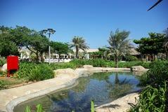 Types of Fujairah resorts. Resorts Fujairah. UAE. Coast of the Indian Ocean. Hotels and recreation areas on the shores of the Indian Ocean. Beautiful Royalty Free Stock Photos