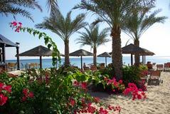 Types of Fujairah resorts. Resorts Fujairah. UAE. Coast of the Indian Ocean. Hotels and recreation areas on the shores of the Indian Ocean. Beautiful Royalty Free Stock Images