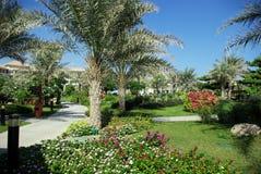 Types of Fujairah resorts. Resorts Fujairah. UAE. Coast of the Indian Ocean. Hotels and recreation areas on the shores of the Indian Ocean. Beautiful Royalty Free Stock Image