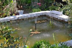 Types of garden ponds with fontain