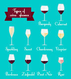 Types of glasses infographic. Set Royalty Free Stock Photo