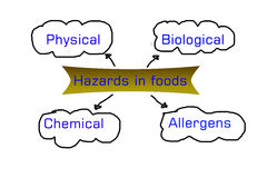 Types of hazards that can be found in food products Royalty Free Stock Images