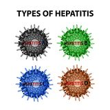 Types of Hepatitis. Viruses Hepatitis A, B, C, D. Infographics. Vector illustration on isolated background. Types of Hepatitis. Viruses Hepatitis A, B, C, D Royalty Free Stock Photography