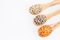 Types of lentils - Lens culinaris Royalty Free Stock Images