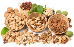 Types of nuts stock images
