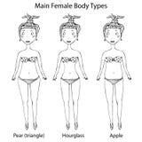 Types principaux de forme de corps féminin Sablier, poire ou triangle et Apple Croquis tiré par la main réaliste de style de grif Images libres de droits